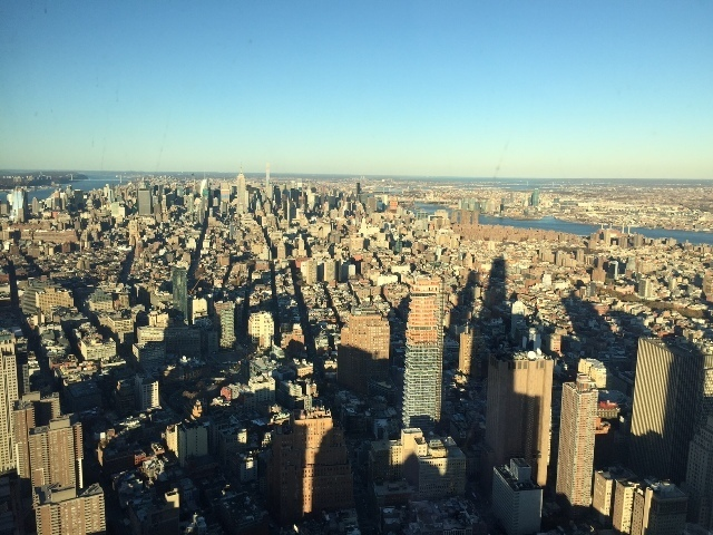 View on Manhattan from Freedom Tower