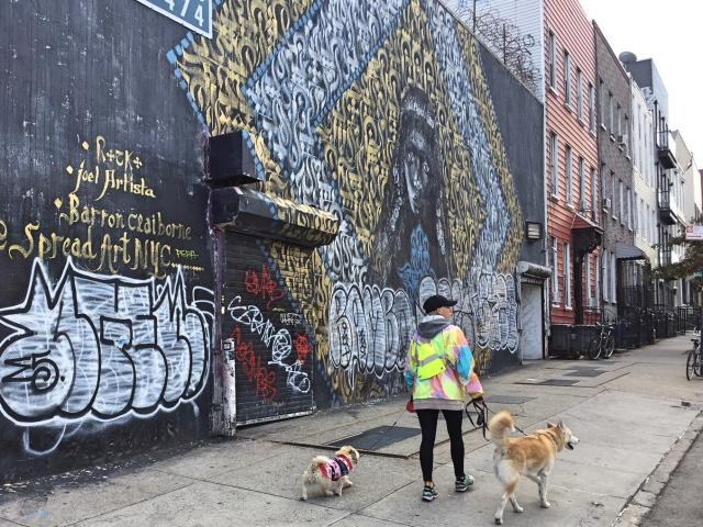 Bushwick streetart Troutman Street mural